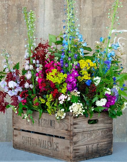 Flores com